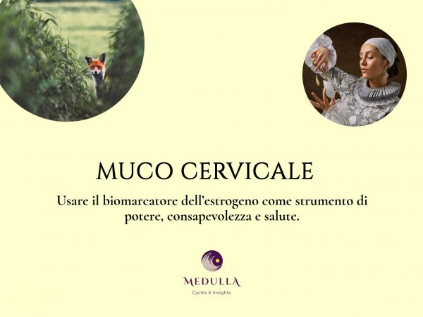 Muco_Cervicale_cover